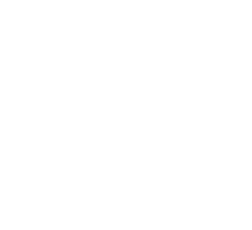 Lead Global Brands. DESCENTE RECRUITING PAGE 2019